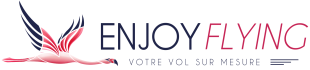 Logo Enjoy Flying